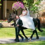 Stibal-wedding